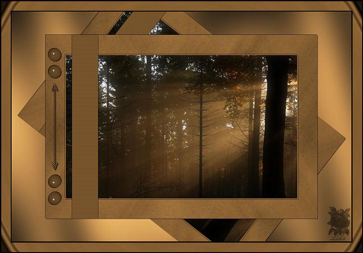 Silencio en el bosque