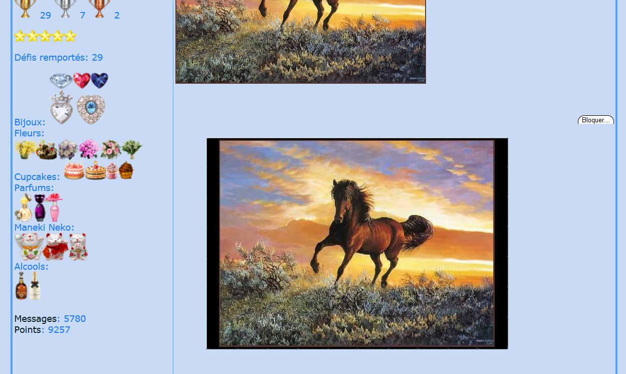 Puzzle #38 - Le cheval 150505020932341450