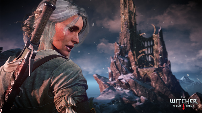 The Witcher 3: Wild Hunt image 3