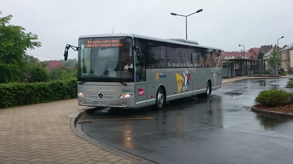 Services routiers TER Grand Est 150524113636801420