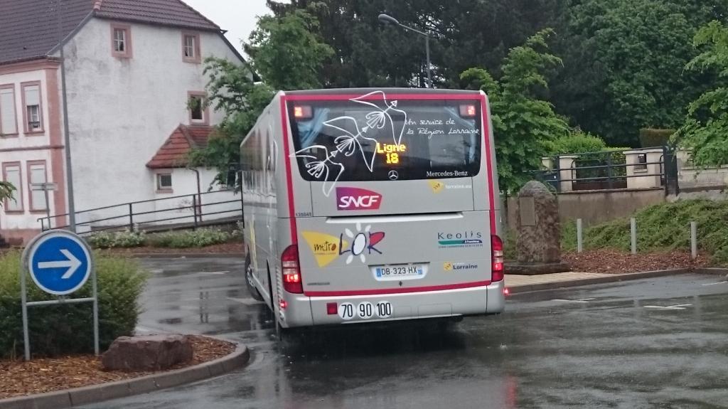Services routiers TER Grand Est 150524113637833752