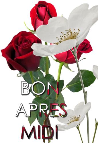 Bon Lundi 15060812083737839