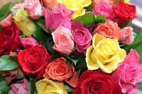 Fleurs  Mini_150609023108984310