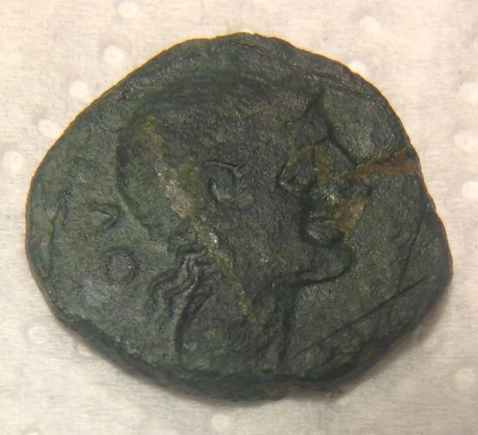 Bronze KAIANTOLO au sanglier ( Longostalètes ) 15062011081387932