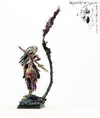Bordel de Pazu (elfes noirs, AOS, elfes sylvains...) Mini_150723050845896354