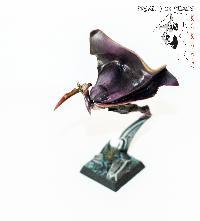 Bordel de Pazu (elfes noirs, AOS, elfes sylvains...) Mini_150723051048933016