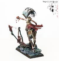 Bordel de Pazu (elfes noirs, AOS, elfes sylvains...) Mini_15072305123613269