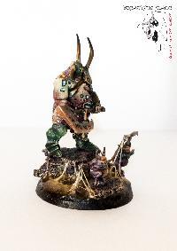 Bordel de Pazu (elfes noirs, AOS, elfes sylvains...) Mini_150908075035860687