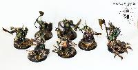 Bordel de Pazu (elfes noirs, AOS, elfes sylvains...) Mini_150908075119208674