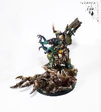 Bordel de Pazu (elfes noirs, AOS, elfes sylvains...) Mini_150908075130851741
