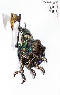 Bordel de Pazu (elfes noirs, AOS, elfes sylvains...) Mini_150908075154148303
