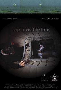 A Vida Invisível poster image
