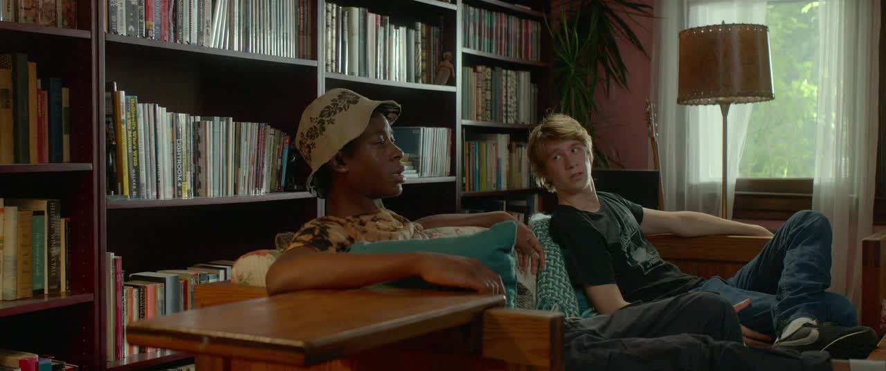 Me and Earl and the Dying Girl image