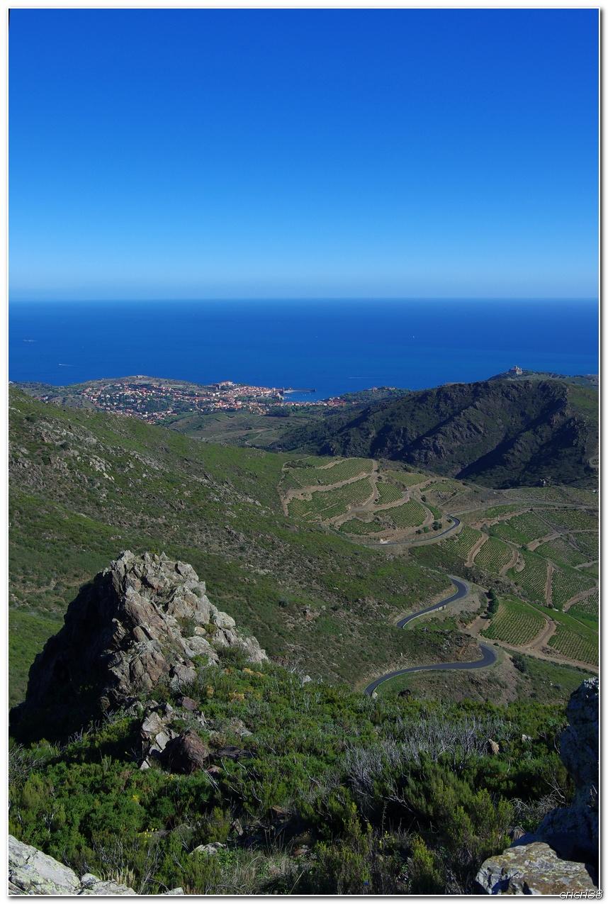 Vue sur les Vignobles de  Banyuls et de la tour  Madeloc 150929110002654548