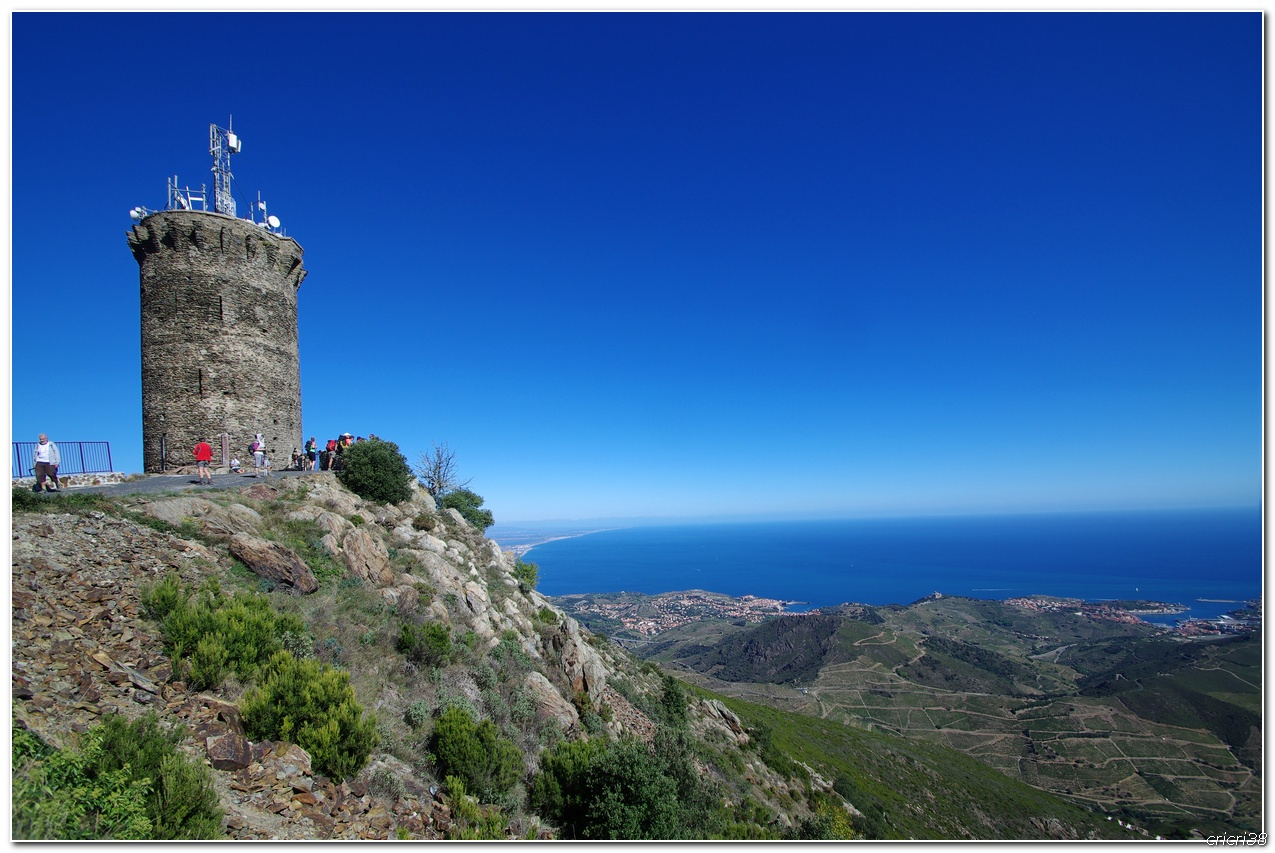 Vue sur les Vignobles de  Banyuls et de la tour  Madeloc 150929110026187475