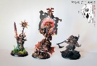 Bordel de Pazu (elfes noirs, AOS, elfes sylvains...) Mini_151022081741240319
