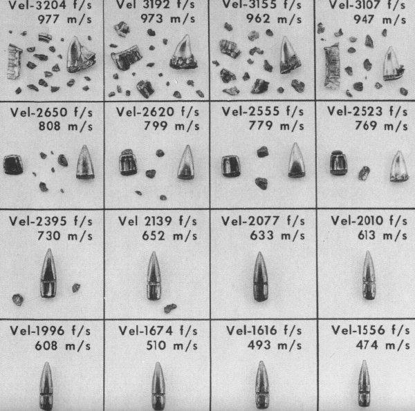 Munition SELLIER & BELLOT MUNITION A BALLES 30-06  - Page 2 151024010305312614