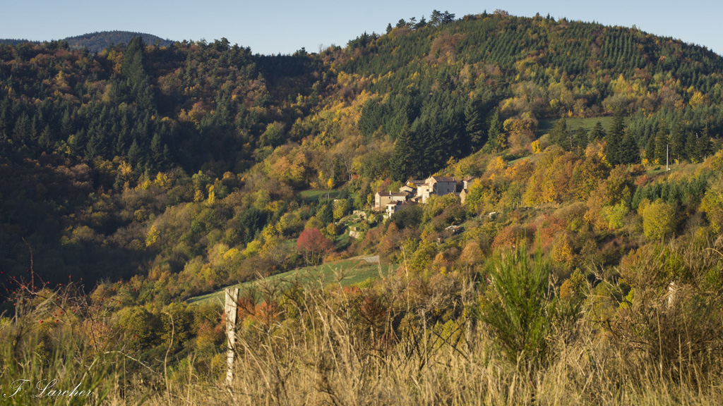 Couleurs d'automne dans le vignoble ardéchois 151114074212603034