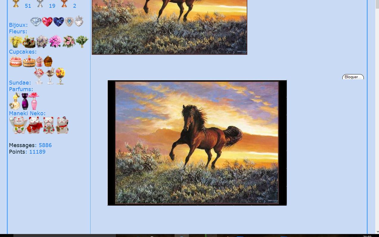 Puzzle #38 - Le cheval 151123091352733444