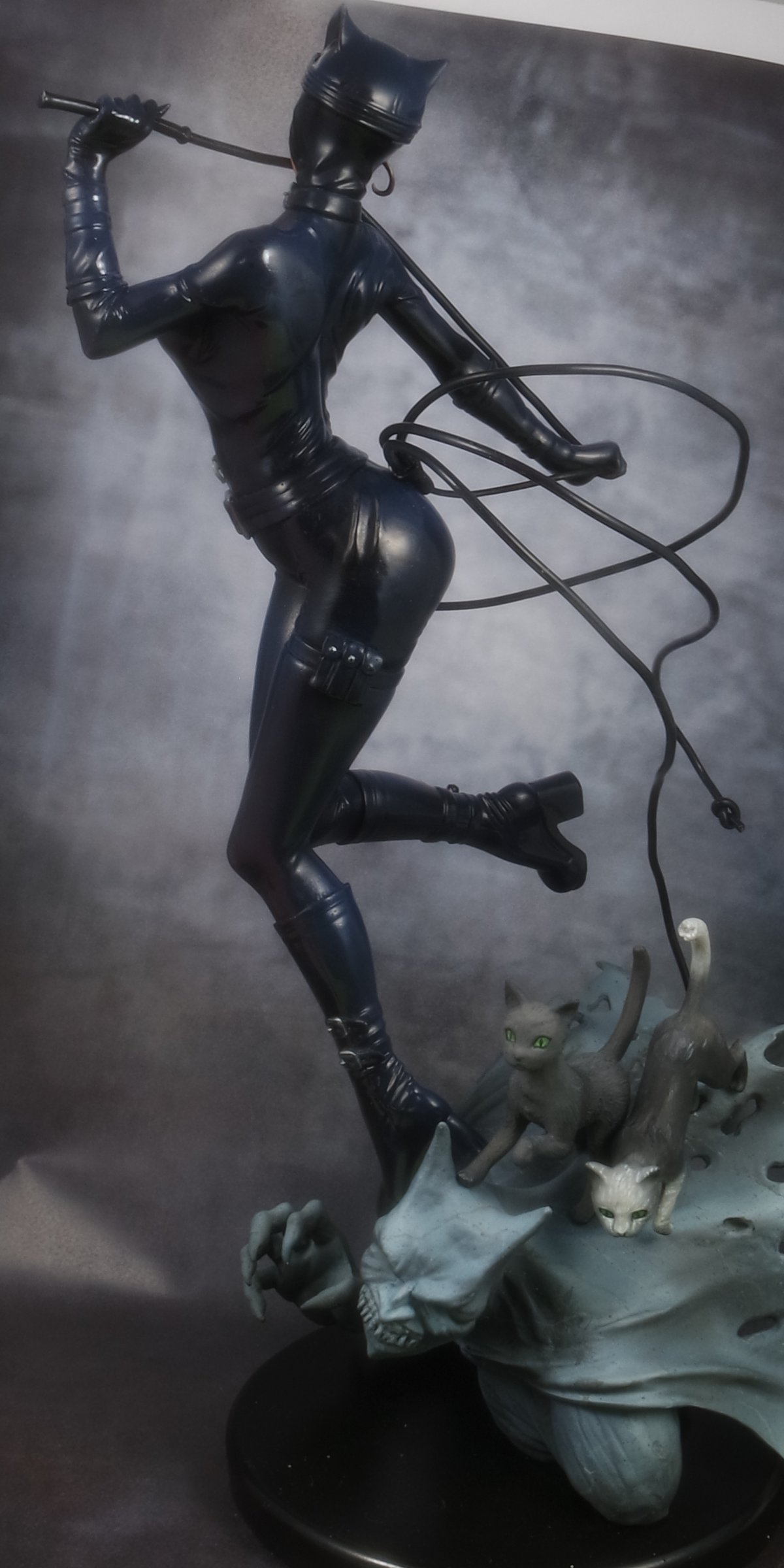Catwoman 1/6eme 151206100118802169