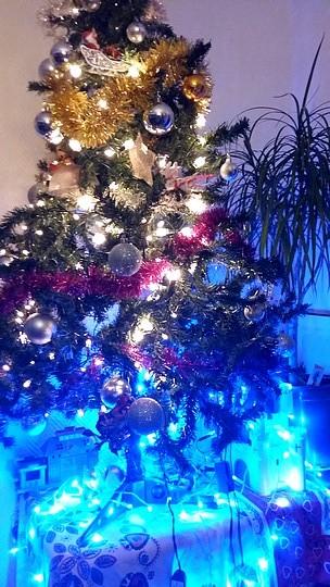 Votre sapin de Noël 151216054409295703