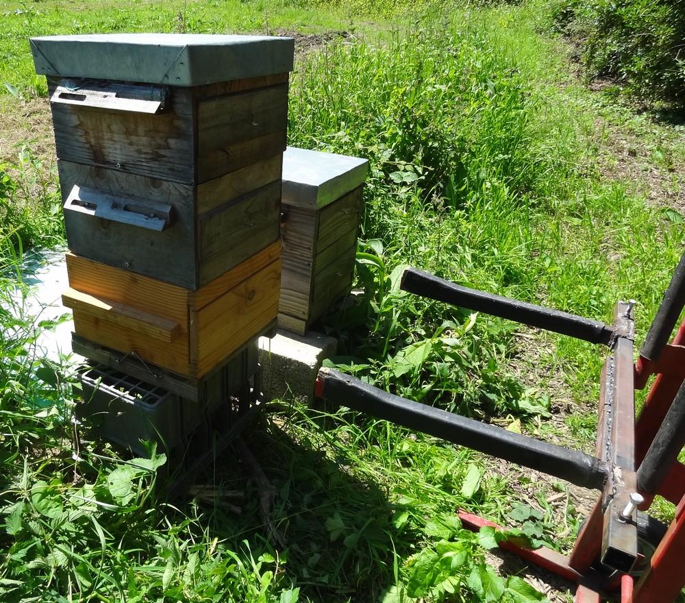 élévateur ruche