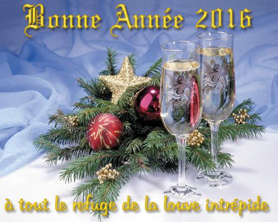 Joyeuses fêtes à tous !!! 160101114634830159