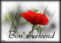 bon week-end coquelicot