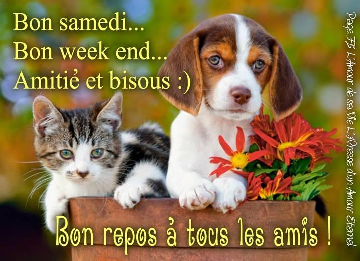 Bon Samedi 160130093800609537