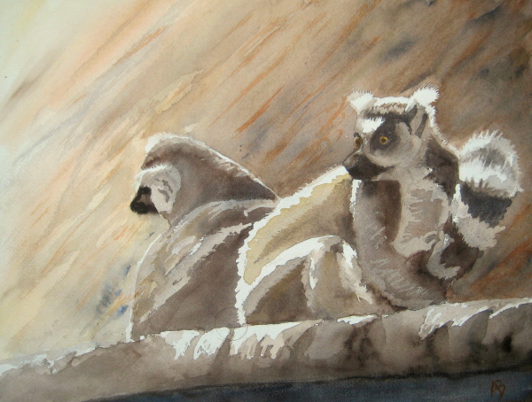 Les lémuriens (7) aquarelle_1