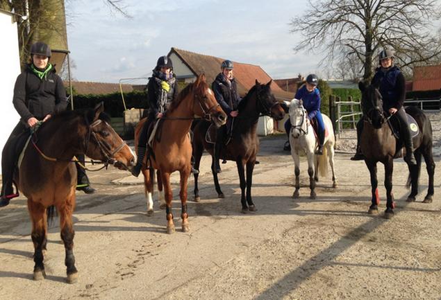 Six demoiselles de BTSA 2 ont découvert le cheval de loisir. Cliquez pour voir leur diaporama.