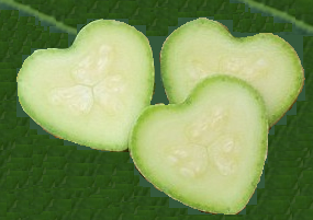 0000000000000000000__coeur-courgette