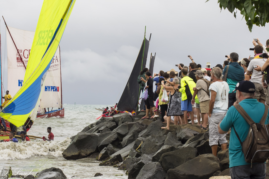 Courses de yoles en Martinique 160309101602893158