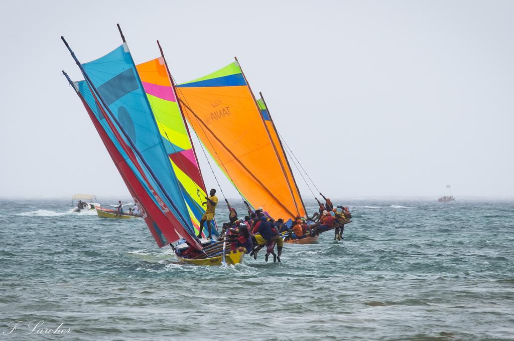Courses de yoles en Martinique - Page 2 160312075542100560