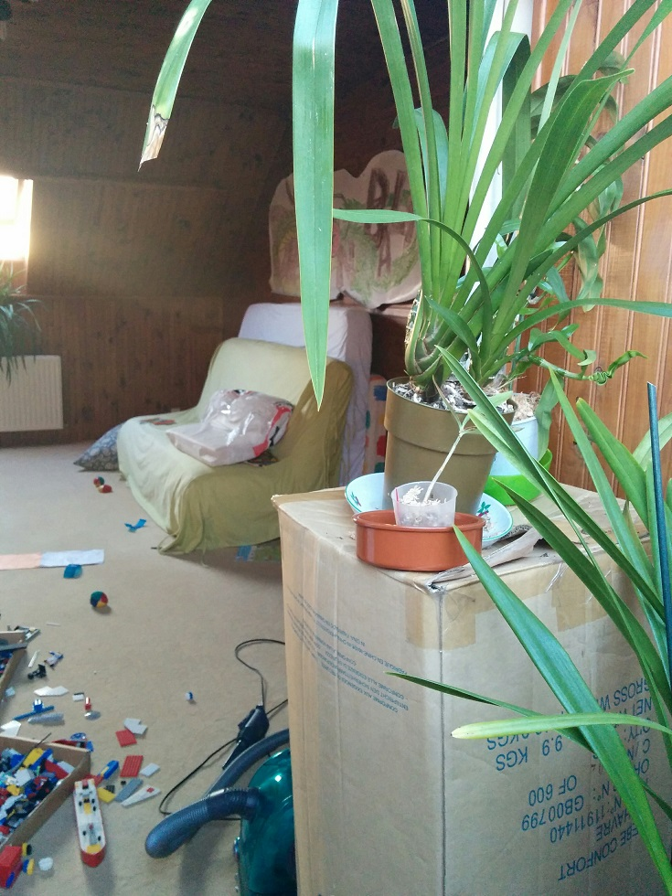 Annexion pioupiouesque de la maison (et du travail) 160322080243870652