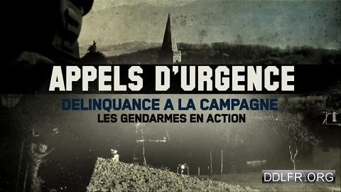 Appels d'urgence Délinquance à la campagne les gendarmes en action