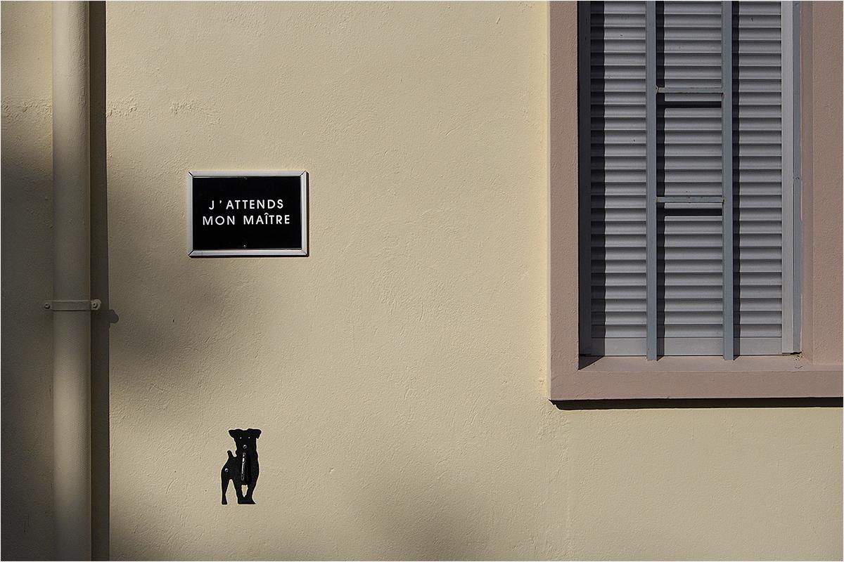 """"""" J'attend mon maitre...."""" 160417062215982576"""