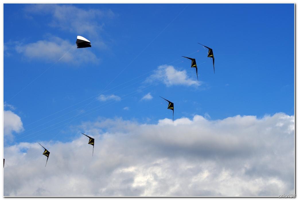 Cerfs volant de Berck Plage 160423091641310845