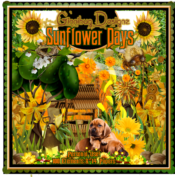 GBD_SunflowerDays