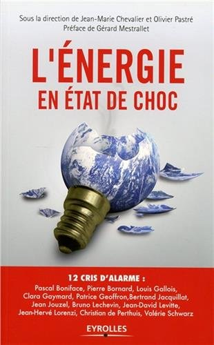 télécharger L'énergie en état de choc : 12 cris d'alarme