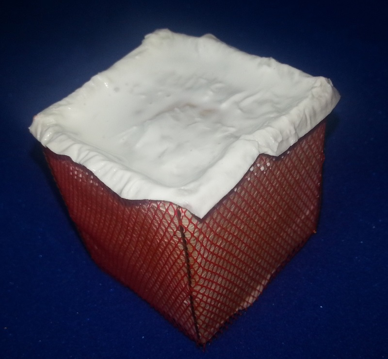(denis simon) fabrication de Bastion Wall 160508041119417633