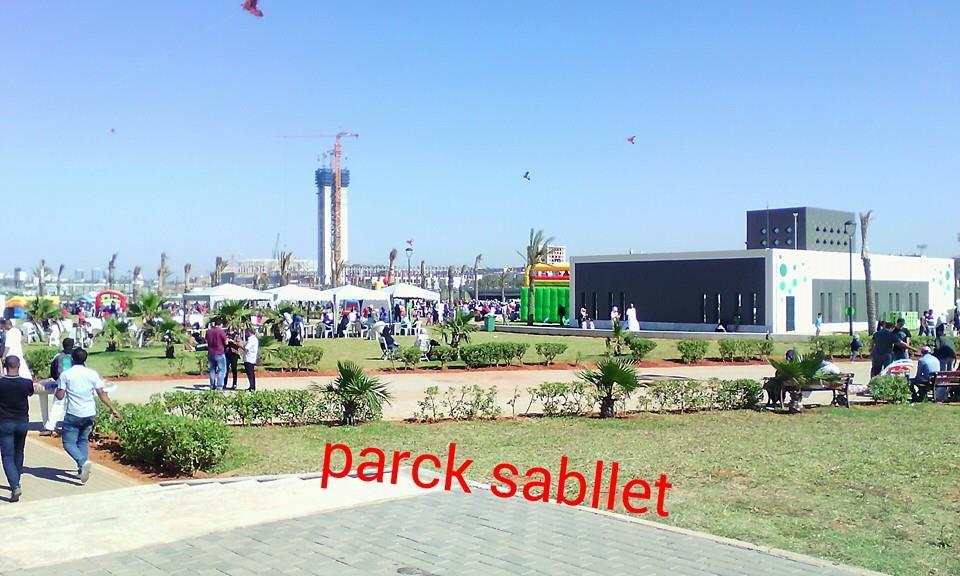 مشروع جامع الجزائر الأعظم: إعطاء إشارة إنطلاق أشغال الإنجاز - صفحة 14 160526024541975283