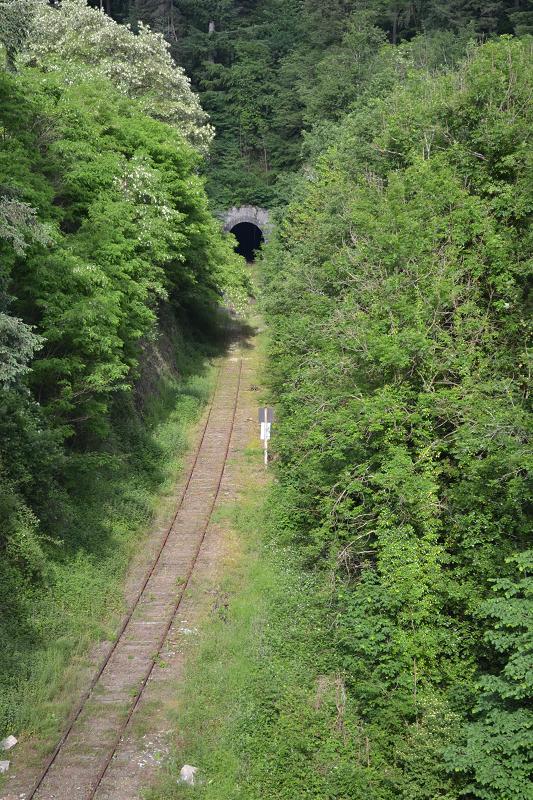 Livradois ( Ambert/Giroux-gare ) 160611042101167961