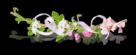 fleur rose petitesans-titre