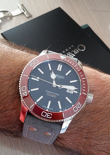 trident - Revue Christopher Ward C60 Trident Pro 600m - Page 4 160806020530616644