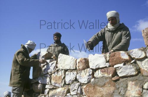 Le conflit armé du sahara marocain - Page 9 160818074348155911