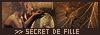 LOGO DE SECRET DE FILLE 160826015753420376