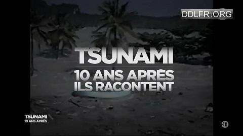 Tsunami, 10 ans après ils racontent