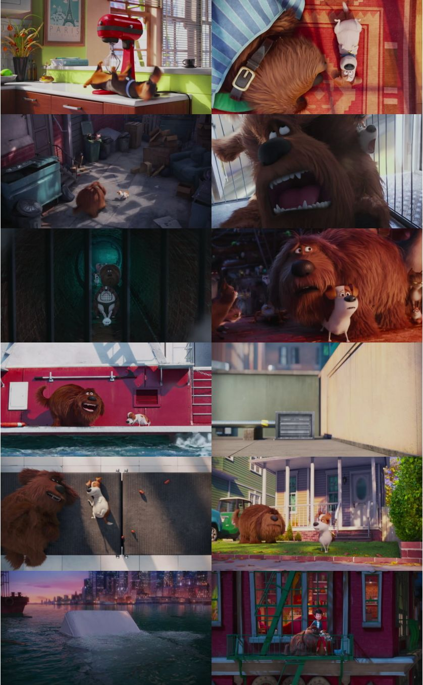The Secret Life of Pets 2016 1080p WEBRip x264 AAC2.0-STUTTERSHIT
