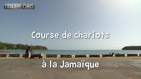 Course de chariots à la Jamaïque